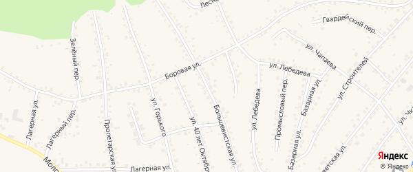 Большевистская улица на карте поселка Тальменки Алтайского края с номерами домов