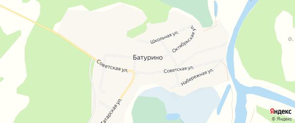 Карта села Батурино в Томской области с улицами и номерами домов