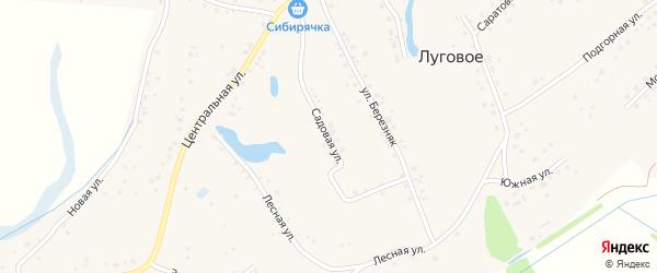 Садовая улица на карте Лугового села Алтайского края с номерами домов