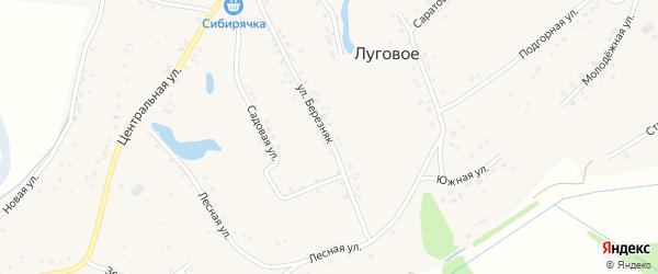 Улица Березняк на карте Лугового села Алтайского края с номерами домов