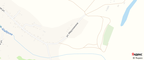 Улица Мерзликина на карте села Шадрино с номерами домов