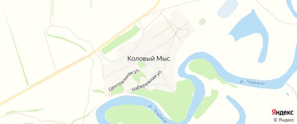 Карта села Колового Мыса в Алтайском крае с улицами и номерами домов