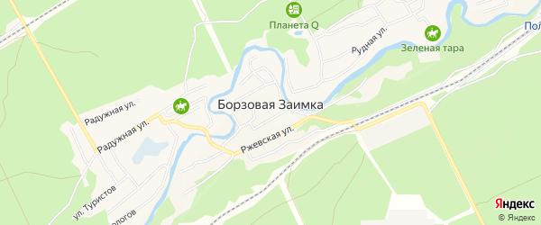 Карта поселка Борзовой Заимки города Барнаула в Алтайском крае с улицами и номерами домов