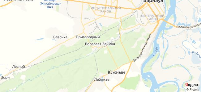 Борзовая Заимка на карте