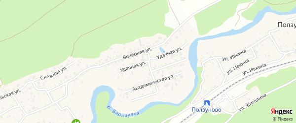 Удачная улица на карте поселка Борзовой Заимки с номерами домов