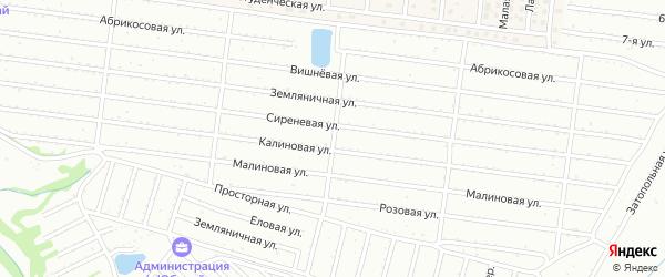 Розовая улица на карте садового некоммерческого товарищества Алтая с номерами домов
