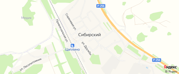 Карта Сибирского поселка в Алтайском крае с улицами и номерами домов