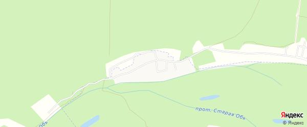 Кармацкое садовое товарищество на карте Первомайского района Алтайского края с номерами домов