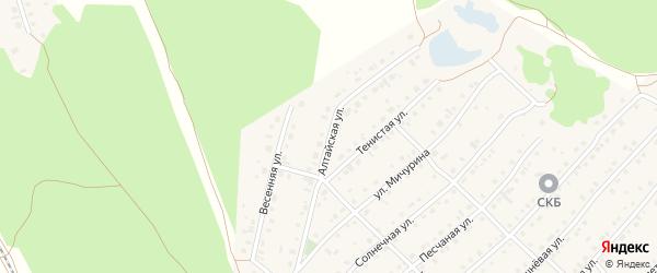 Алтайская улица на карте села Зудилово с номерами домов