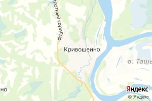 Карта с. Кривошеино Томская область