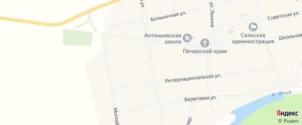 Западная улица на карте села Антоньевки с номерами домов