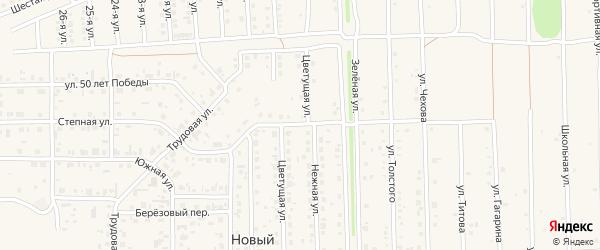 Молодёжный бульвар на карте Нового поселка с номерами домов