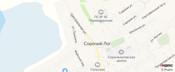 Центральная улица на карте села Сорочьего Лога с номерами домов