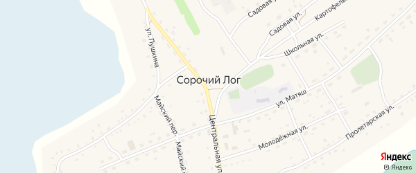 Заречная улица на карте села Сорочьего Лога с номерами домов