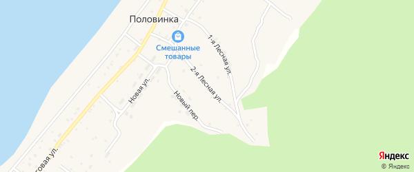 Вторая Лесная улица на карте села Половинки Томской области с номерами домов