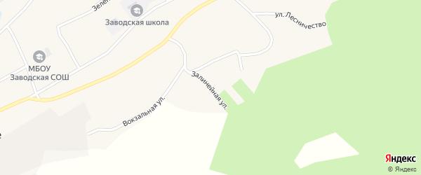 Залинейная улица на карте Заводского села Алтайского края с номерами домов