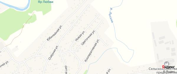 Цветочная улица на карте села Косихи с номерами домов
