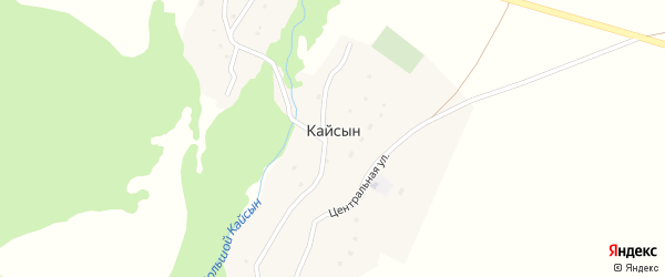 Заречная улица на карте села Кайсына Алтая с номерами домов