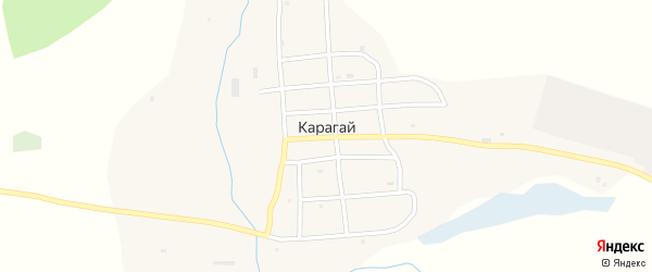 Луговая улица на карте села Карагая Алтая с номерами домов
