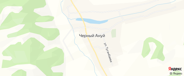 Карта села Черного Ануй в Алтае с улицами и номерами домов