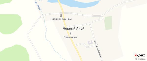 Улица Туганбаева на карте села Черного Ануй Алтая с номерами домов