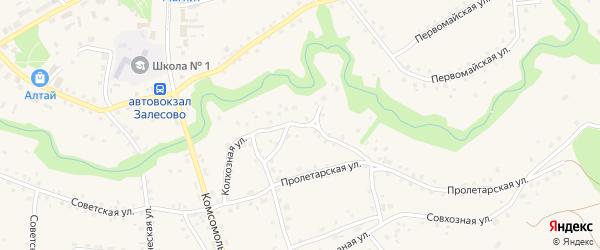 Колхозная улица на карте села Залесово с номерами домов