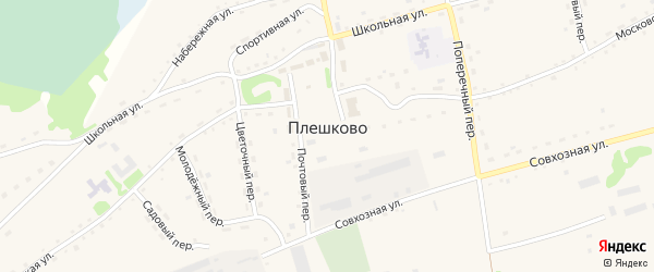 Новый переулок на карте села Плешково с номерами домов