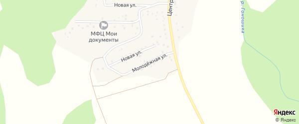 Молодежная улица на карте села Гоношихи с номерами домов