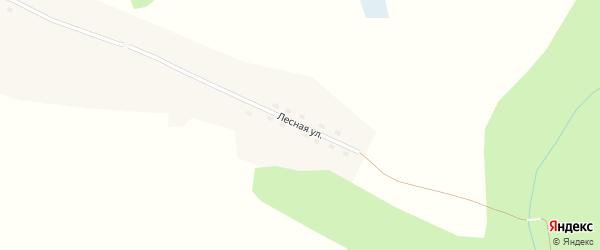 Лесная улица на карте Банного села Алтая с номерами домов