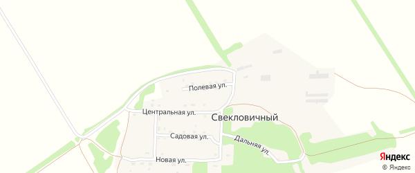 Полевая улица на карте станции Уткуля с номерами домов