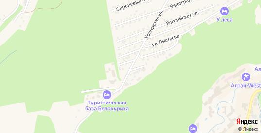 Холмистая улица в Белокурихе с номерами домов на карте. Спутник и схема онлайн