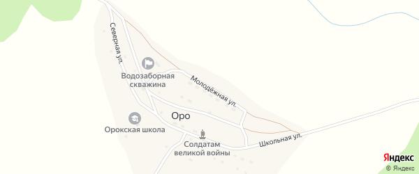Молодежная улица на карте села Оро Алтая с номерами домов