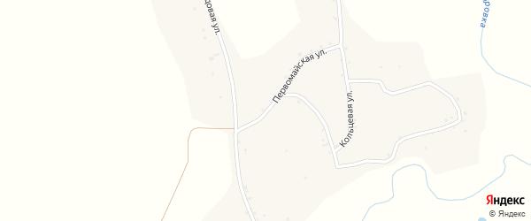 Первомайская улица на карте села Новой Чемровки Алтайского края с номерами домов