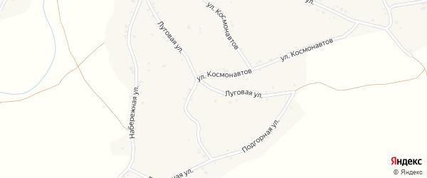 Луговая улица на карте села Новой Чемровки Алтайского края с номерами домов