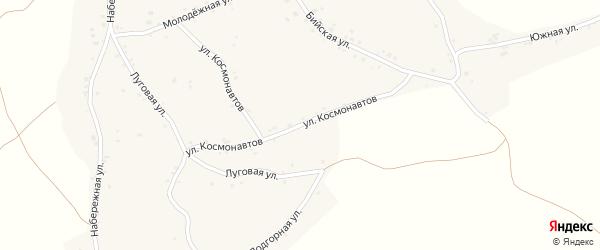 Улица Космонавтов на карте села Новой Чемровки с номерами домов