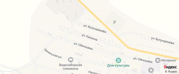 Улица Калкина А.Г. на карте села Ябогана Алтая с номерами домов