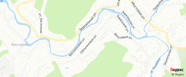 Облепиховая улица на карте поселка Заварзино с номерами домов