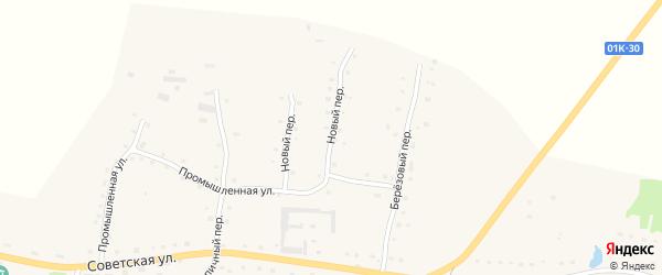 Новый переулок на карте села Старобелокурихи Алтайского края с номерами домов