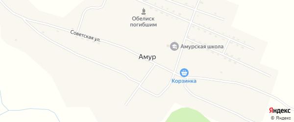 Больничная улица на карте села Амура Алтая с номерами домов
