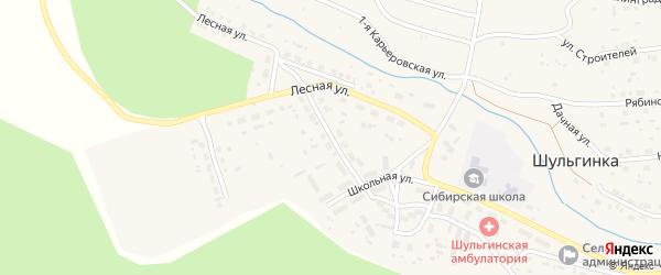 Березовый переулок на карте села Шульгинки Алтайского края с номерами домов