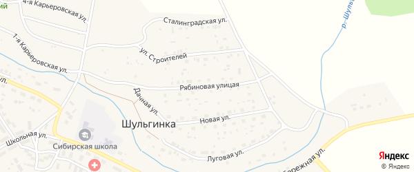 Рябиновая улица на карте села Шульгинки с номерами домов