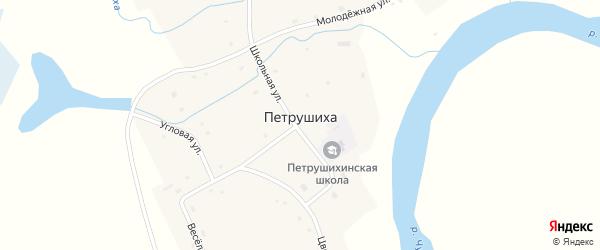 Угловая улица на карте села Петрушихи Алтайского края с номерами домов