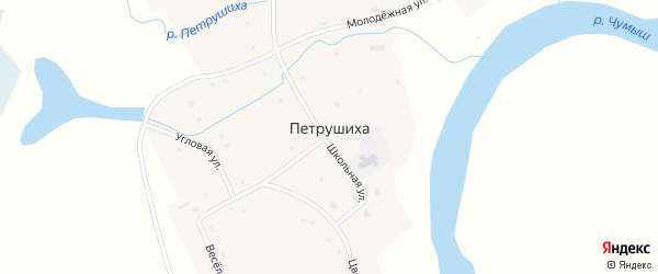 Молодежная улица на карте села Петрушихи с номерами домов