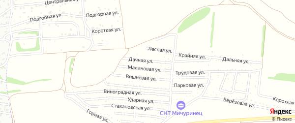 Дачная улица на карте садового некоммерческого товарищества Мичуринца с номерами домов