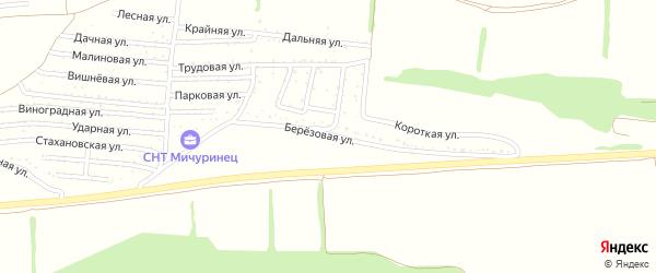 Березовая улица на карте садового некоммерческого товарищества Мичуринца с номерами домов