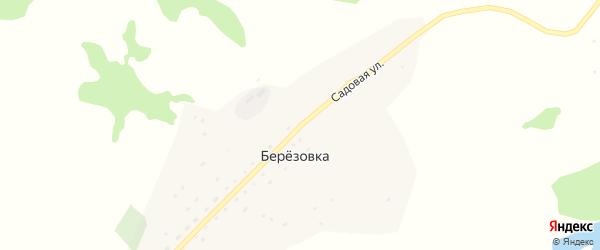 Садовая улица на карте поселка Березовки Алтая с номерами домов