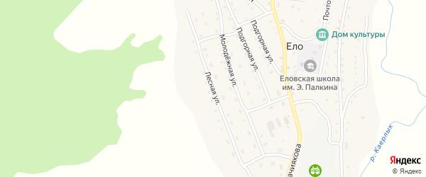 Лесная улица на карте села Ело Алтая с номерами домов