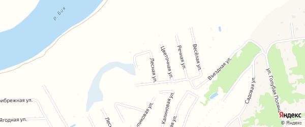 Лесная улица на карте садового некоммерческого товарищества Бийчанки с номерами домов