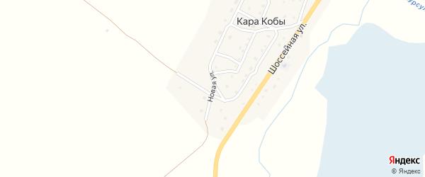 Новая улица на карте села Кары Кобы Алтая с номерами домов