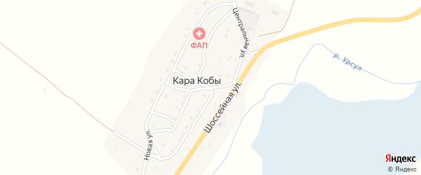 Центральная улица на карте села Кары Кобы Алтая с номерами домов
